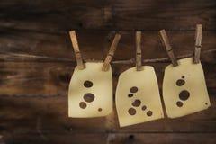 切片瑞士干酪 免版税图库摄影
