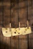 切片瑞士干酪 免版税库存照片