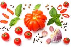 切片的混合在白色背景和香料隔绝的蕃茄、蓬蒿叶子、大蒜 顶视图 免版税图库摄影