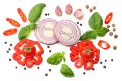 切片的混合蕃茄、红洋葱、蓬蒿叶子、大蒜、甜椒胡椒和香料在白色背景 顶视图 图库摄影