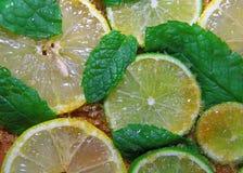 切片石灰和薄菏柠檬、叶子和蔗糖 库存照片