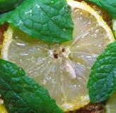 切片石灰和薄菏柠檬、叶子和蔗糖 免版税库存图片