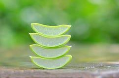 切片芦荟在石头的维拉叶子 免版税库存照片
