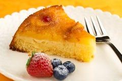 切片菠萝蛋糕 库存照片