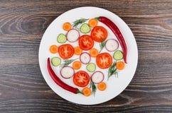 切片蕃茄、萝卜、黄瓜和莳萝,在pla的胡椒 库存照片