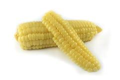 切的†‹â€ ‹玉米 库存图片