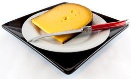 切的干酪 免版税库存照片