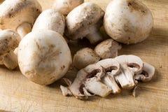 切的未加工的有机白色蘑菇 图库摄影