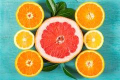 切的葡萄柚、桔子和柠檬 库存照片