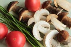 切的蘑菇用红色蕃茄 免版税库存图片