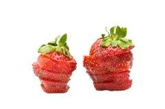 切草莓 库存照片