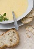 切达乳酪汤 免版税库存图片
