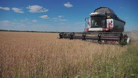 切麦子的联合收割机 r 农业收获生活方式概念 在领域的联合收获 股票视频