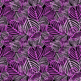 划分为的叶子紫色无缝 库存照片
