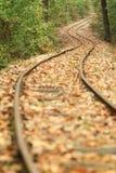 划分为的coverd留下铁路 免版税图库摄影