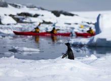 划皮船和企鹅在南极洲 免版税库存图片