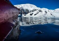 划皮船在南极州 免版税库存图片