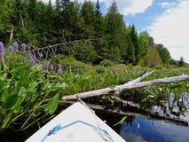 划皮船在河下 库存照片