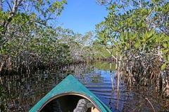 划皮船在沼泽地 库存照片