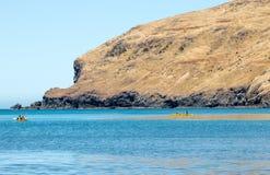 划皮船的新西兰 库存图片