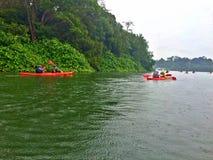 划皮船,湖,森林 免版税库存图片