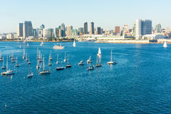 划船在加利福尼亚 免版税库存照片