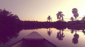 划船在沼泽地 免版税库存图片