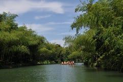 划船在竹森林和湖里 免版税库存图片