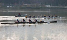 划船小组 免版税库存照片
