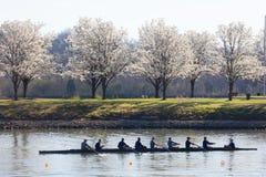 划船者的春训 库存图片