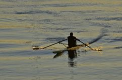 划船者的进展 免版税库存图片