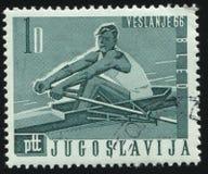 划船运动员 免版税库存图片