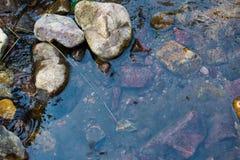 划蝽山滴下的小河水场面 库存图片