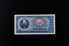 100列伊 免版税库存图片