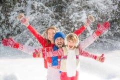 系列在冬天公园 免版税库存照片