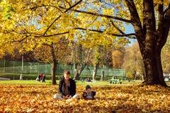 系列在秋天公园 卢布尔雅那斯洛文尼亚 免版税库存图片