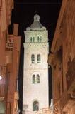 巴列塔大教堂在夜空的钟楼 免版税库存照片