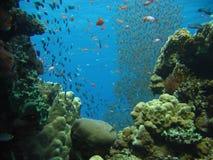 列活礁石 库存图片