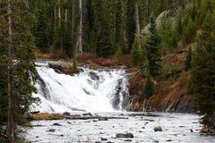 刘易斯瀑布黄石国家公园 免版税库存照片