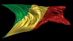 刚果共和国的旗子 皇族释放例证