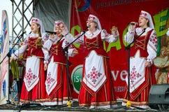 创造性的合唱集体,戈梅利,白俄罗斯表现  库存图片