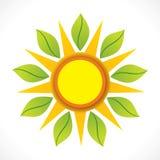 创造性的太阳和绿色叶子象设计观念 库存例证