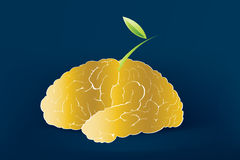 创造性的头脑 免版税库存照片