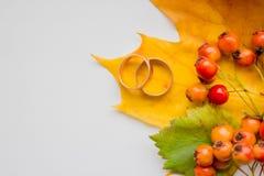 创造性的季节性秋天背景 关闭槭树叶子、金婚圆环和花楸浆果 1个看板卡邀请 免版税图库摄影