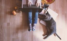 创造性的工作区:工作在计算机辅助的女孩在她旁边 库存图片
