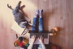 创造性的工作区:工作在计算机辅助的女孩在她旁边 免版税库存照片