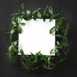 创造性的布局由绿色制成离开与笔记的空的空白在黑背景 顶视图 免版税图库摄影