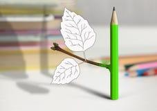 创造性的想法概念、铅笔有分支的和叶子在桌上 免版税库存图片