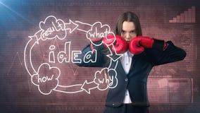 创造性的想法概念,站立在被绘的背景的战斗姿势的把装箱的女实业家在想法组织系统图附近 免版税库存图片