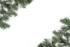 创造性的框架由圣诞节冷杉分支做成在白色背景 Xmas和新年快乐题材 免版税库存图片
